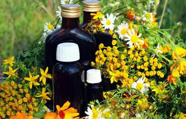 Отвары лекарственных трав для ингаляций