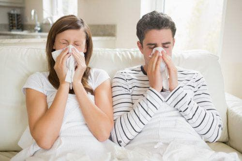 Какие есть порошки от гриппа и простуды