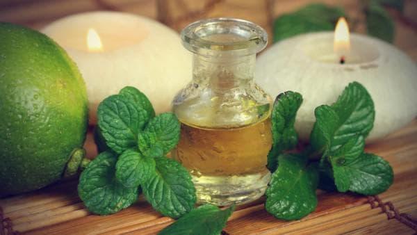 Эфирные масла на основе мяты