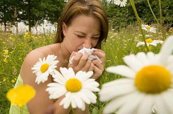 аллергия как ступенька заболевания ларенгитом