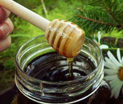 мед и эвкалипт